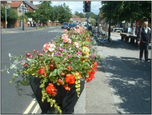 Front Street flower tubs 2007