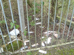 Litter in hedgerow Acomb Wood Meadow