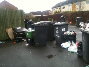 Bins in Foxwood