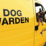dog_warden