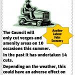 Verge cutting