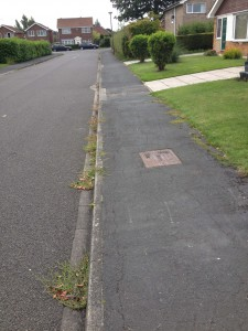Weed growth on Otterwood Lane. Reported 23rd August 2013