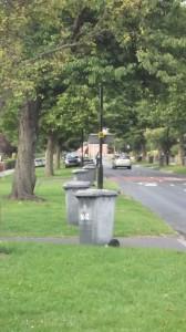 Askham Lane - late Tuesday