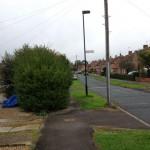 Hedge blocking footpath - Lowfields