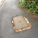 "Easy to report footpath damage using ""my Council"""