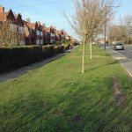 Askham Lane potential parking layby