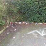 Litter, detritus and vandalism on the Walton Place to Grange Lane snicket has been reported.