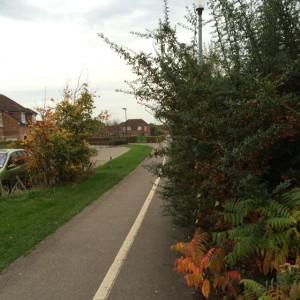 Bushes block cycle path