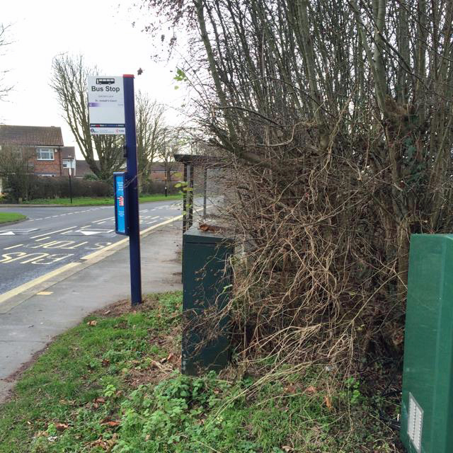 Askham Lane hedge overgrown for four months