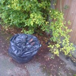 Bin bag also dumped