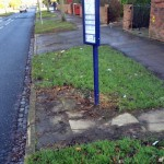Bus stop waitng areas over gorwn