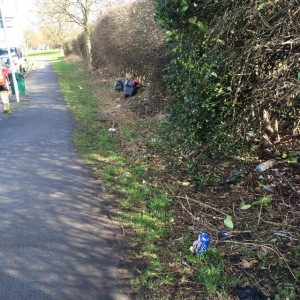 Local fly tipping like this on Grange Lane is being reported regularly  by  the LibDems