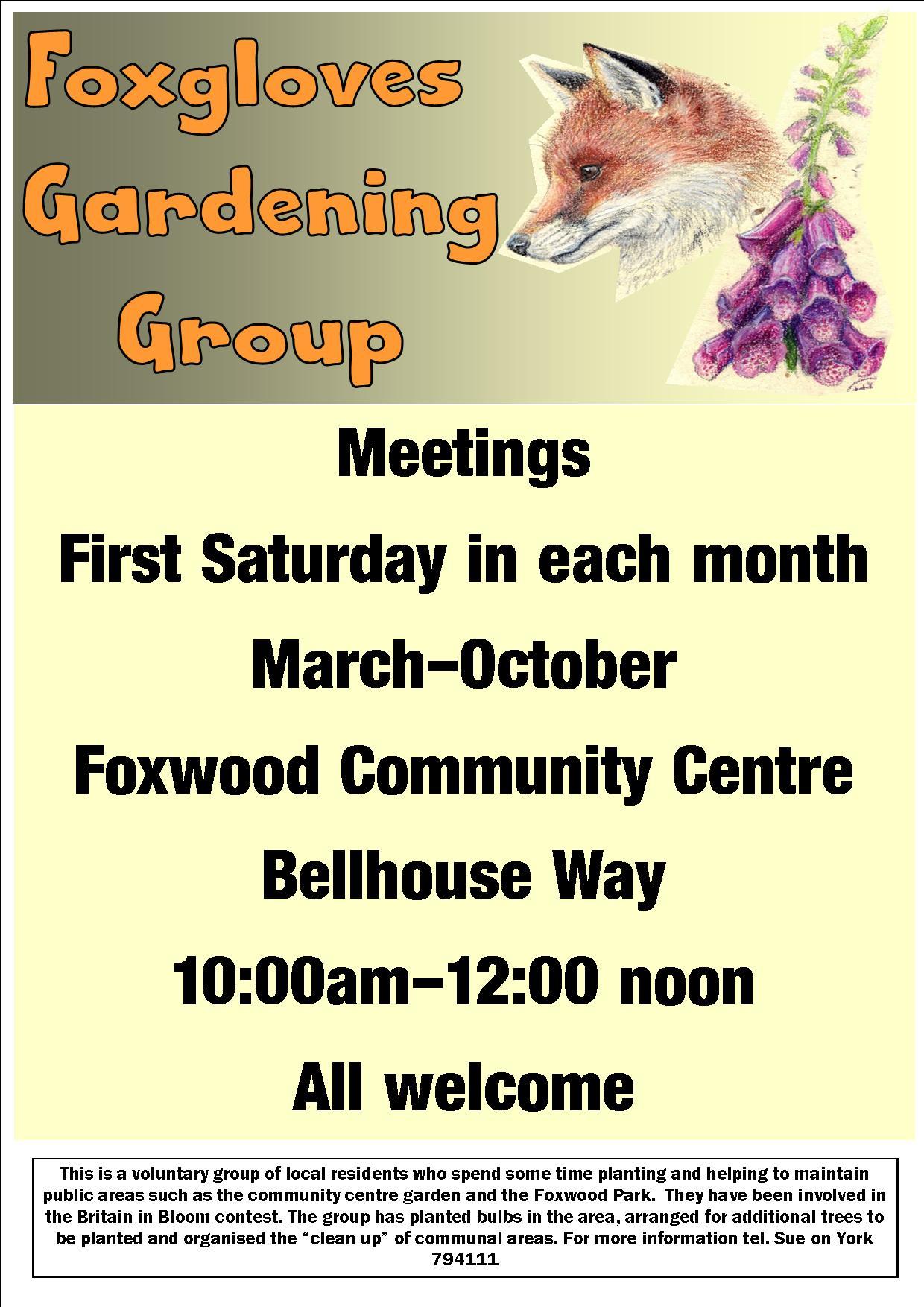 Foxgloves poster