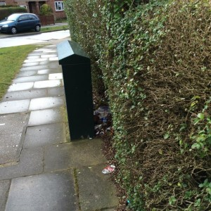 Litter accumulating behind a junction box. An increasingly familiar site in sub-urban York