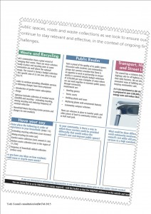 Council consultation leaflet click to access