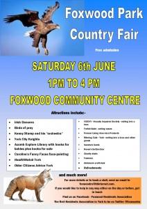 Summer Fair on Saturday