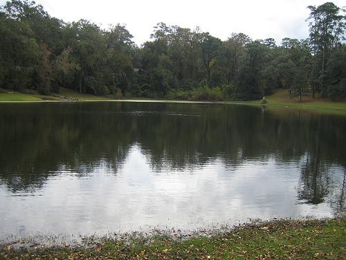 Chapmans Pond 2