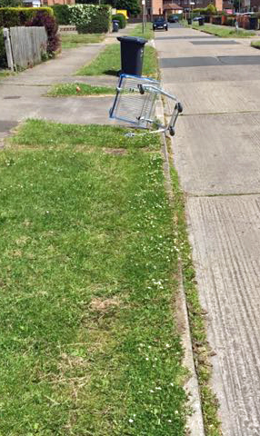 Weeds and dumped trolly on Dijon Avenue