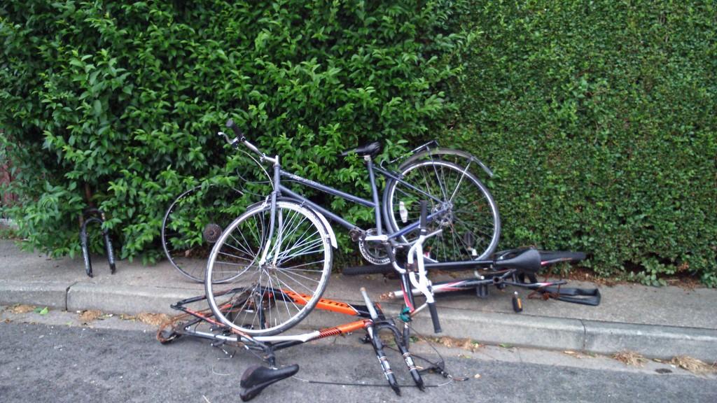 Dumped bikes Foxwood reported by Sheena Jackson