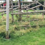 strimming needed under play equipment in GBrange lane park