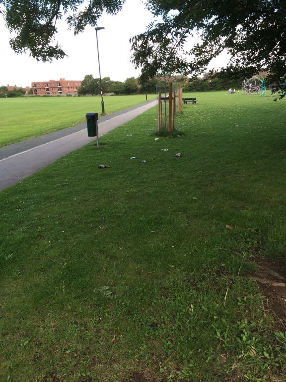 Litter on Chesney's Field