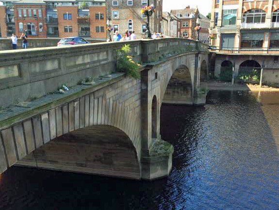 Ouse bridge parapet weeds small 27th Aug 2015