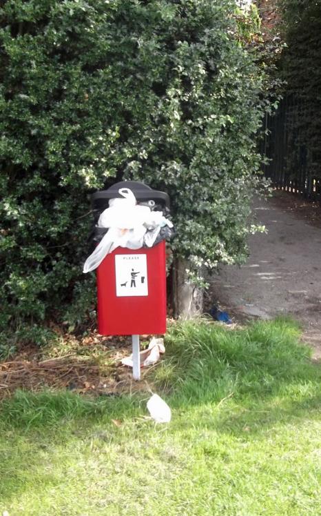 """Overflowing """"poop scoop"""" bin in Cornlands reported y Andrew Waller"""