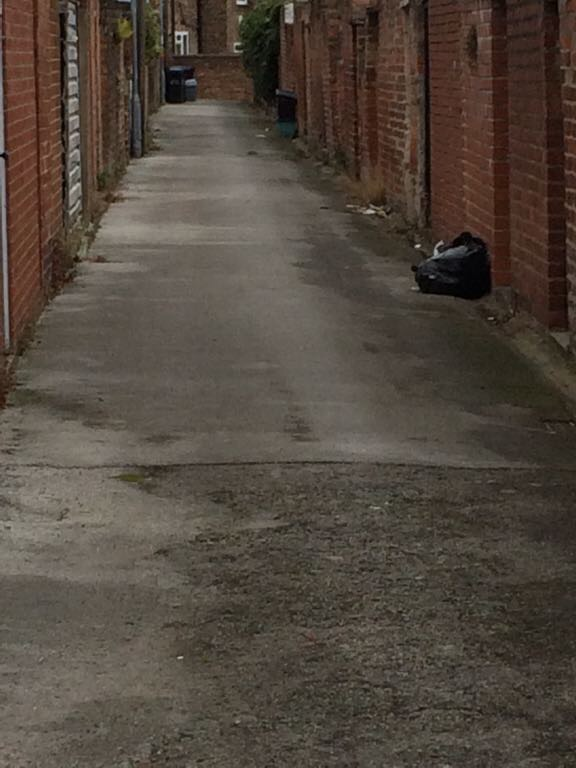 Dumped black bags in back lane
