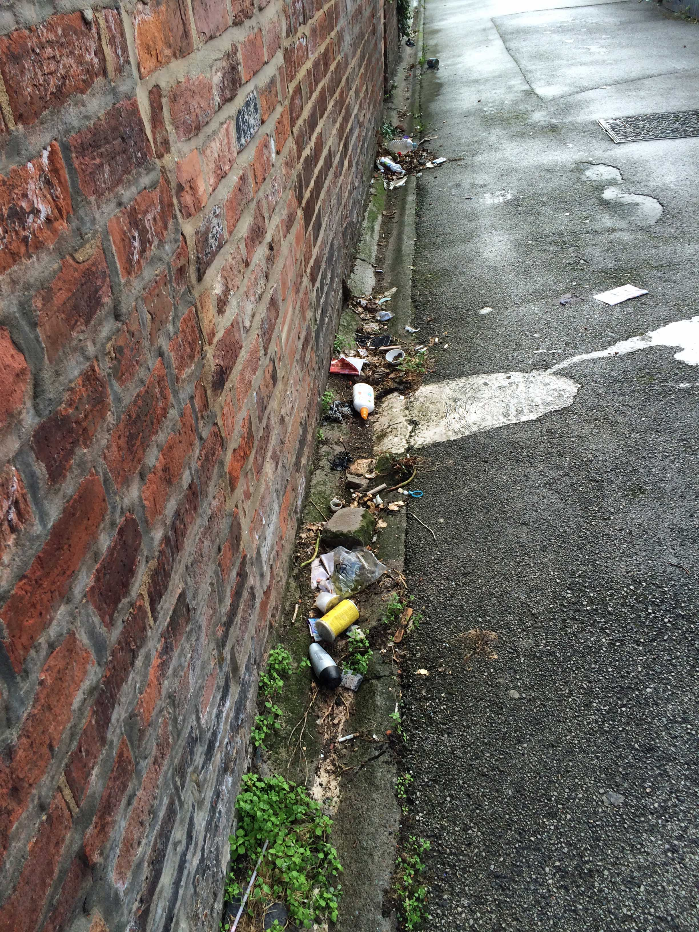 Litter in Gladstone Street/Beaconsfield Street area back lanes