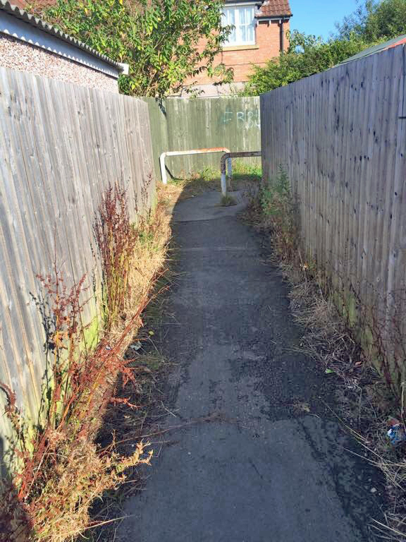 Weeds and litter need removing