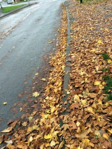 Time for leaves to be swept up. The Green and little Green Lane reported for action
