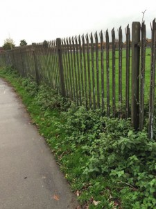 Railings around Thanet Road sports area need painting