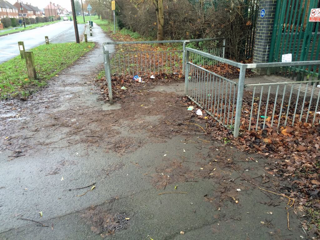 Detritus , leaves and litter on the Grange Lane cycle path entrance