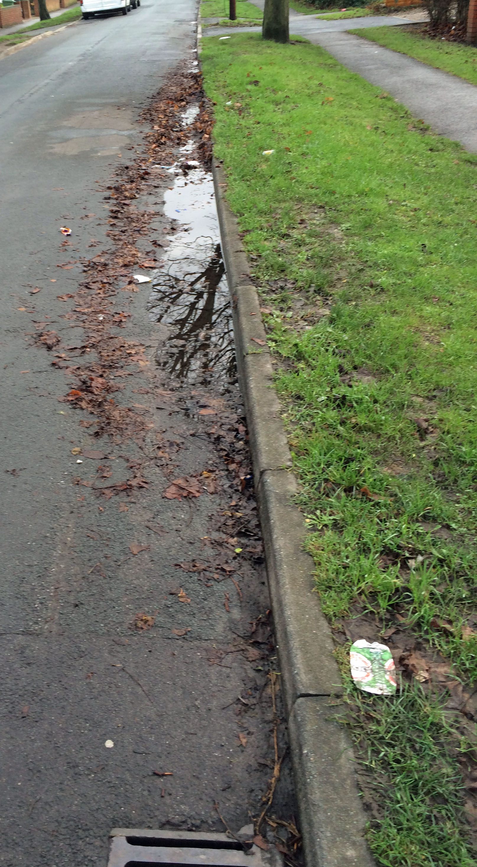 Leaf detritus on little Green Lane in Acomb - Was reported 3 weeks ago