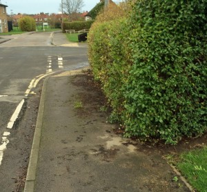 Good news in Ascot way where an overgrown hedge has been cut back