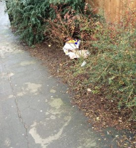 Litter accumuataion on the Titeh Close snicket has been reported