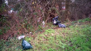 Sheena has asked for black bags dumped in the Foxwood Lane hedge to eb removed