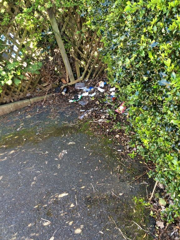 Litter in Walton Place snicket