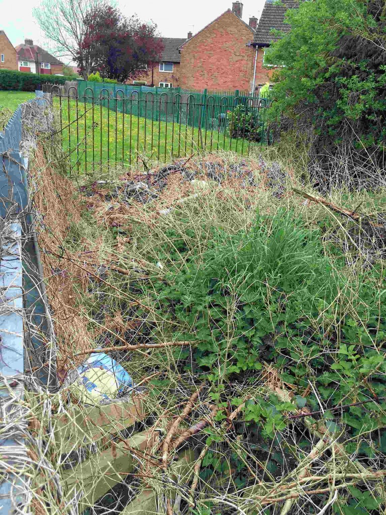 Green waste dumped next to Hob Moor beck