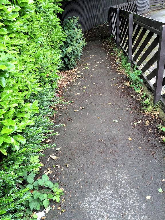 Nettles blocking Greenwood Grove snicket