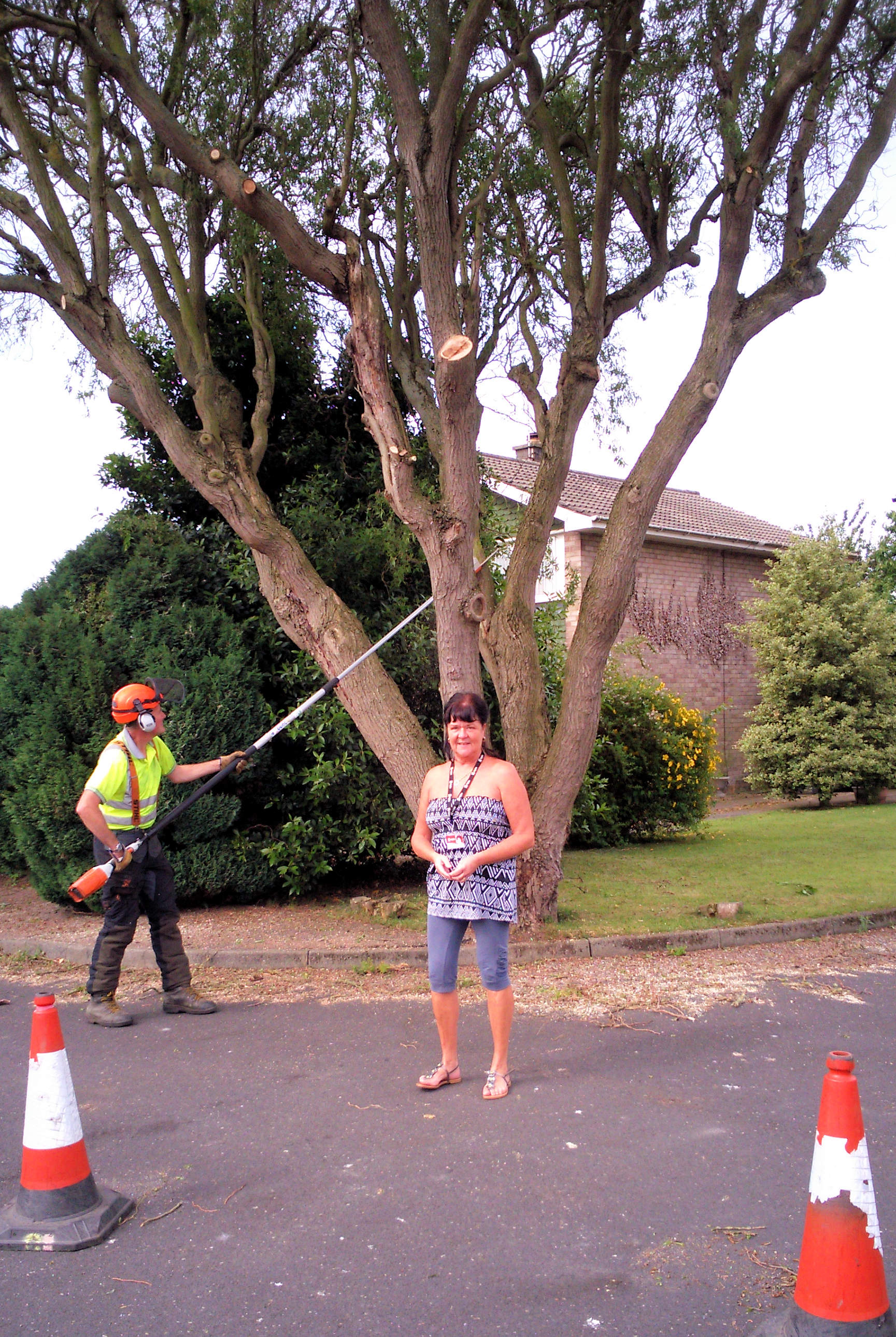 Cedarwood Close tree with Sheena 6th July 2016