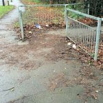 Detritus leaves and litter Grange Lane cycle path 1400 13th Dec 2015