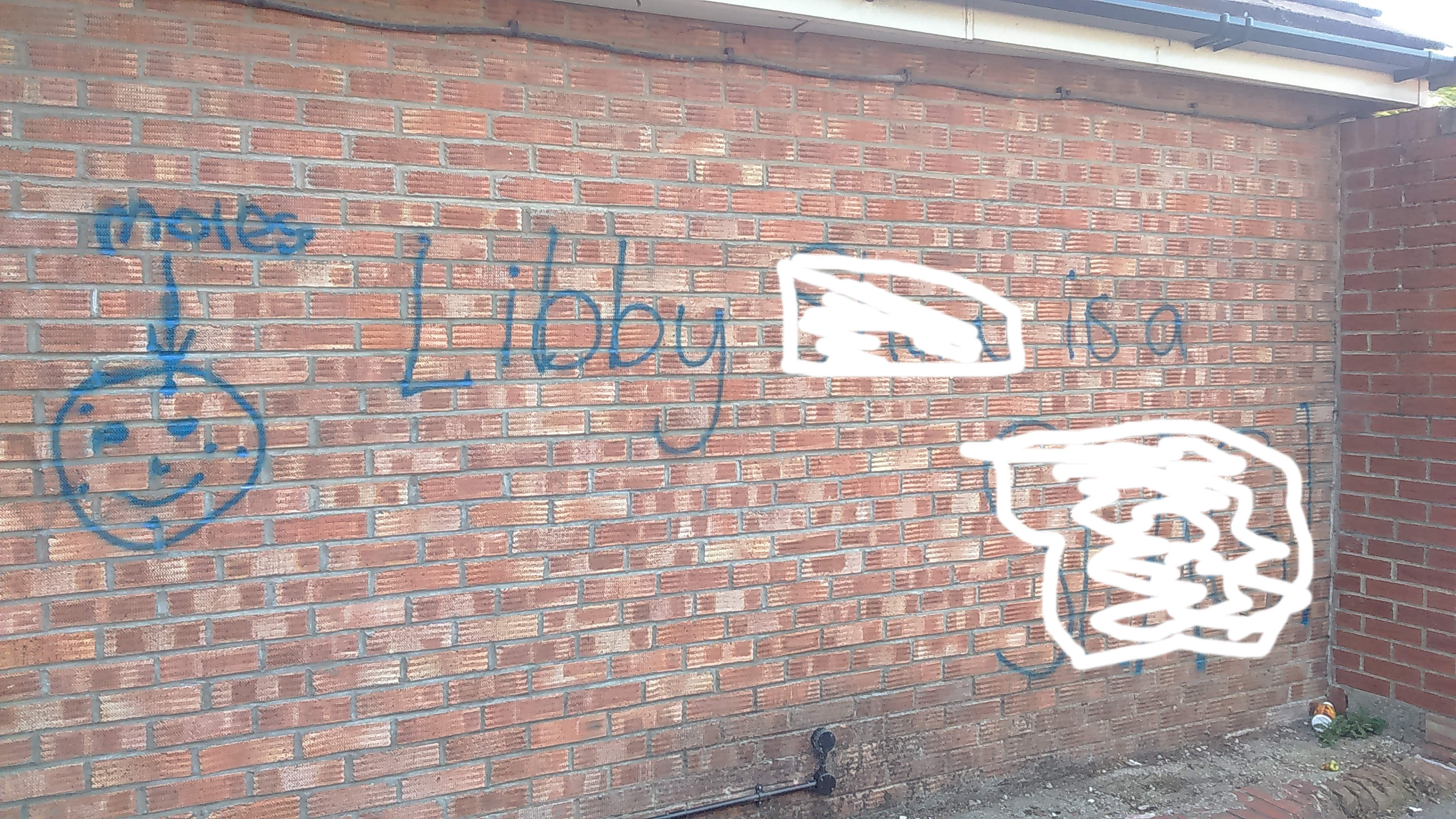 Cllr Sheena Jackson reported this offensive graffiti in the Tennent Road area. There has been an increase in graffiti issues in the area with some residents blaming the lack of high profile PCSO patrols partly for teh decline.