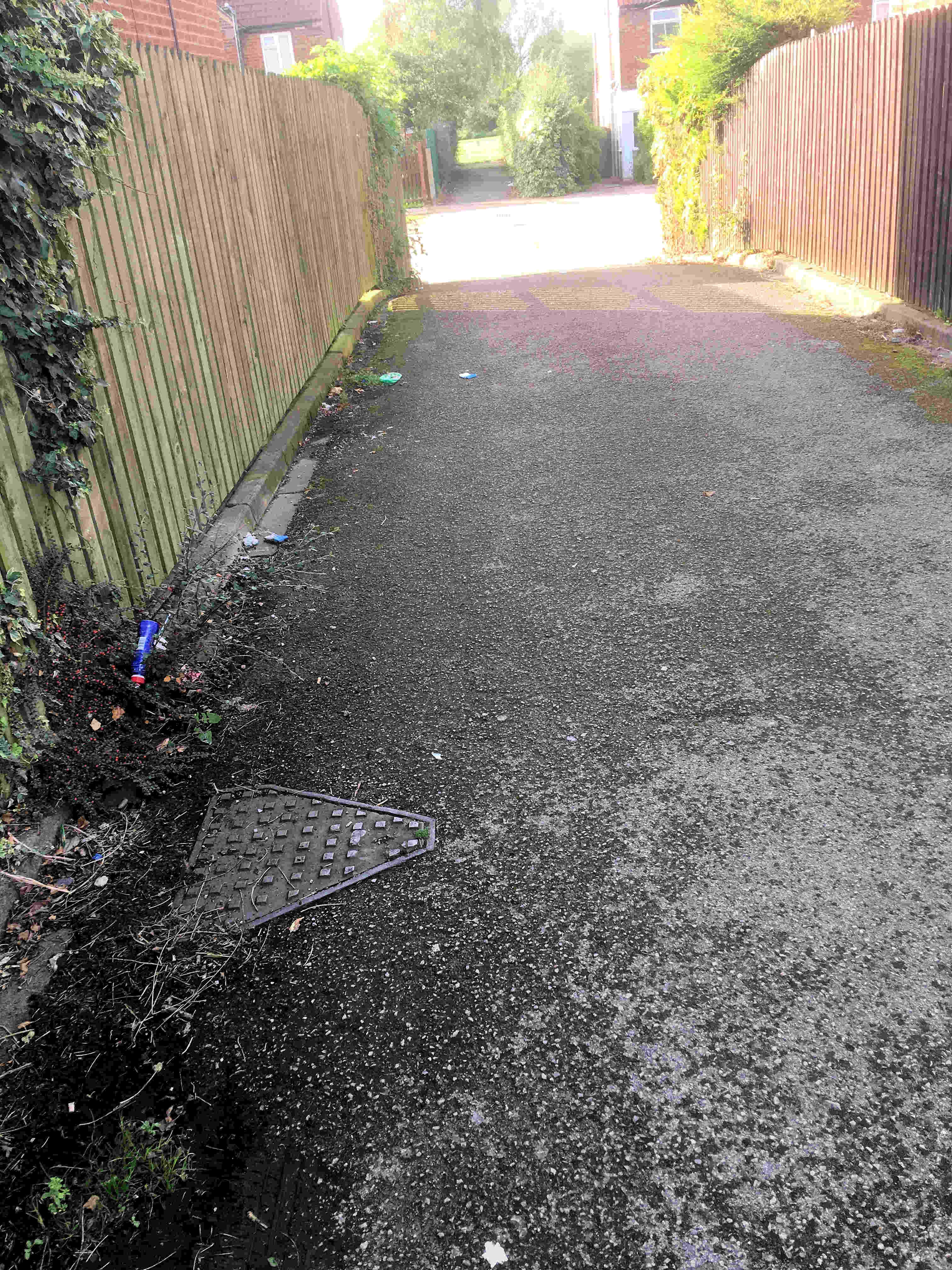 Litter and weeds on garage access road in Westfield Place 1500hrs 22nd Sept 2016