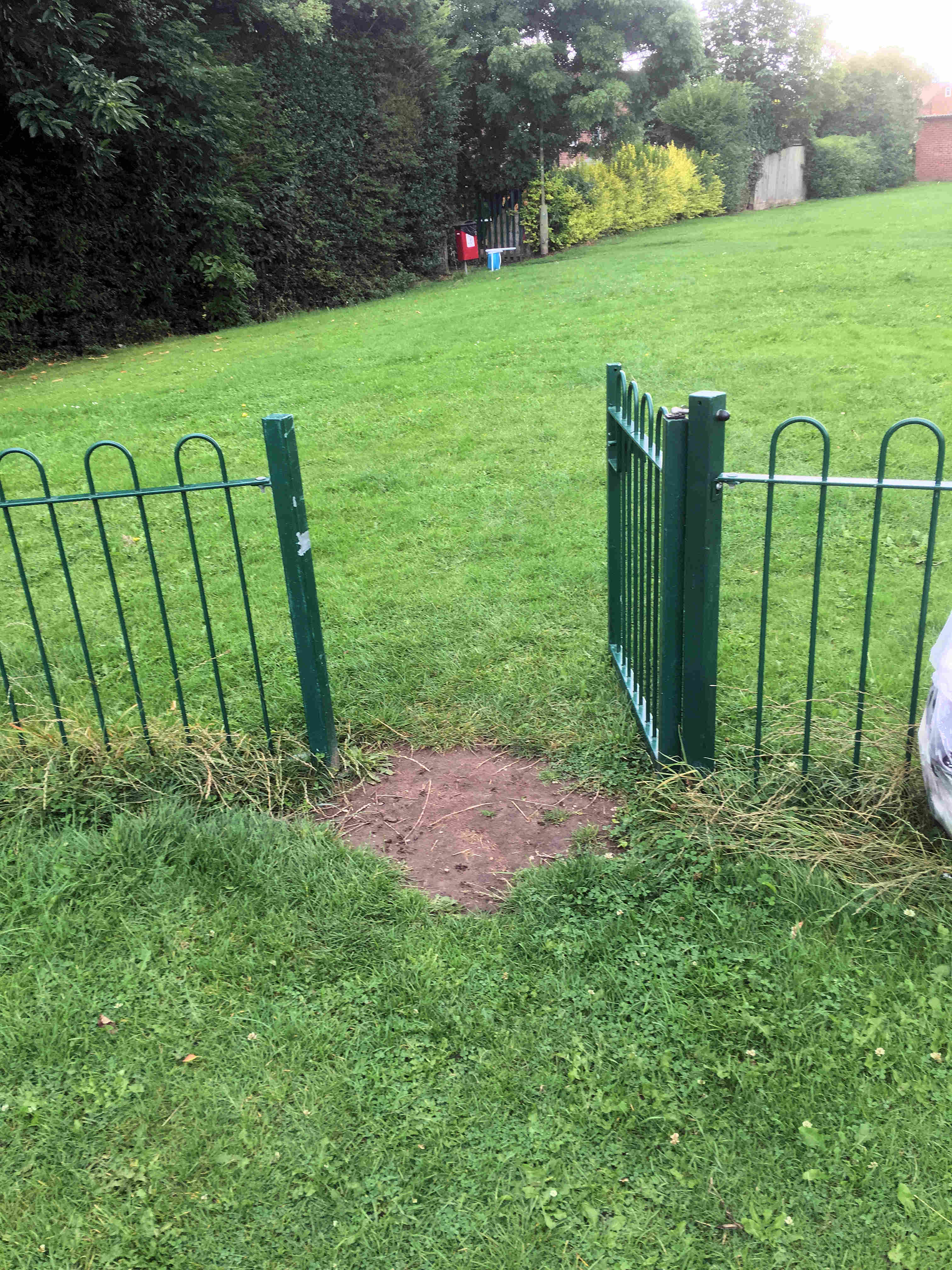 We've asked for a spring to be fitted to the railings which protects the play area in the Cornlands Road park from dogs