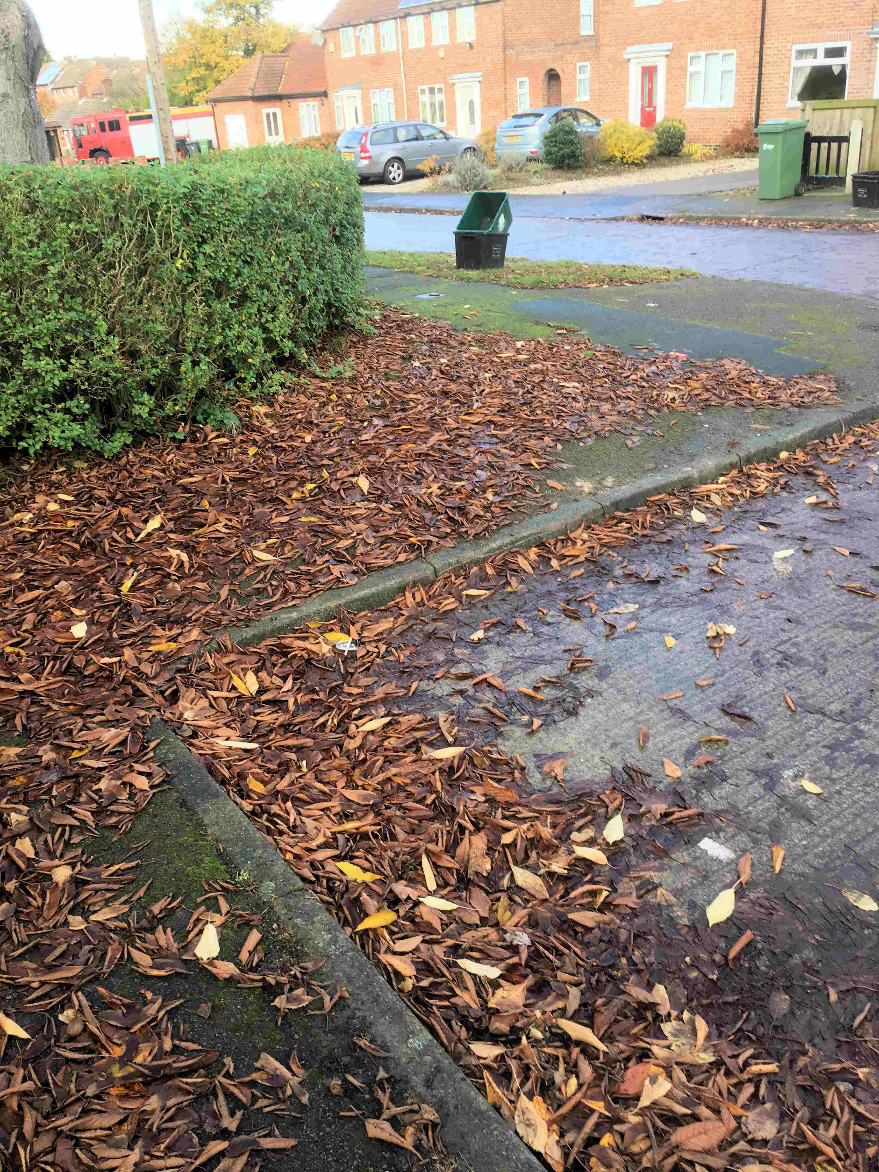 Councillors were out and about reporting issues for attention. These included leaf fall in Rylatt Place