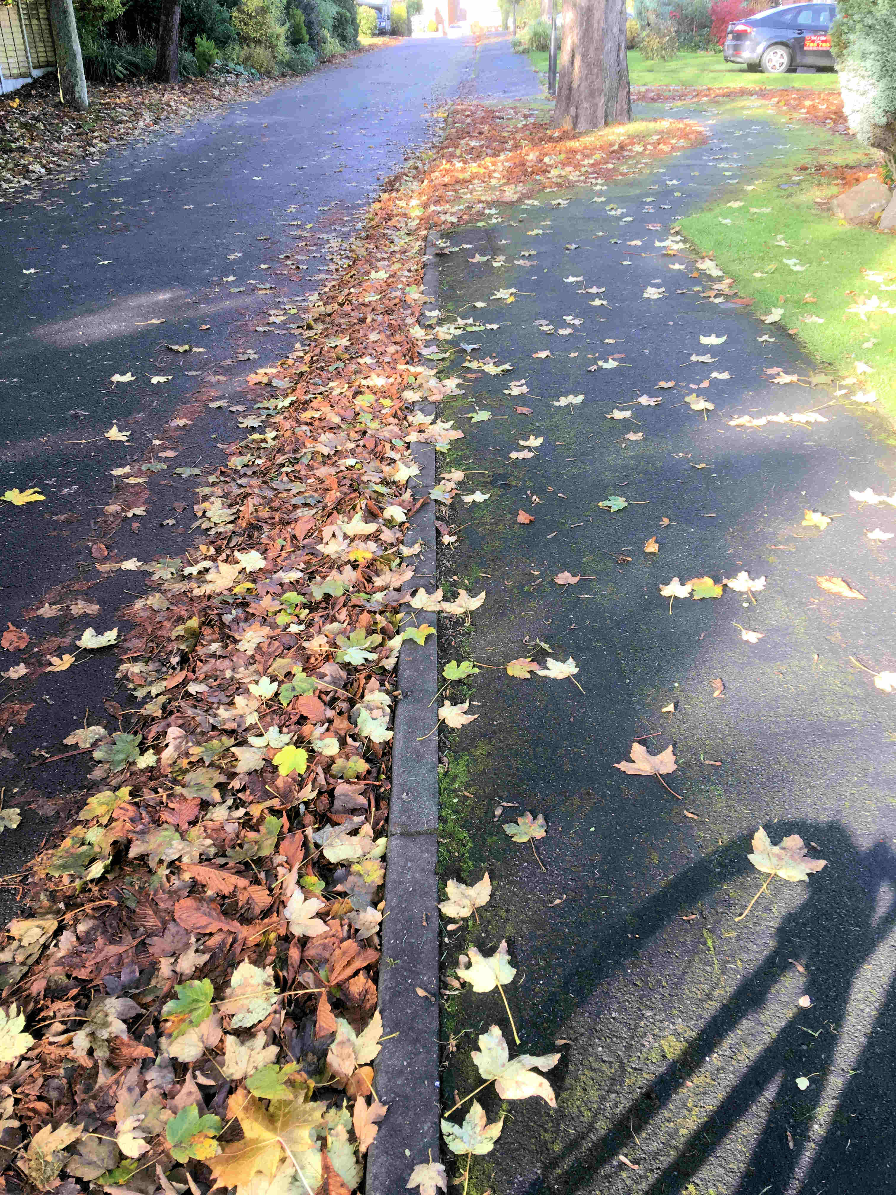 Council staff are working full time sweeping leaves for gutter like these in Vesper Drive