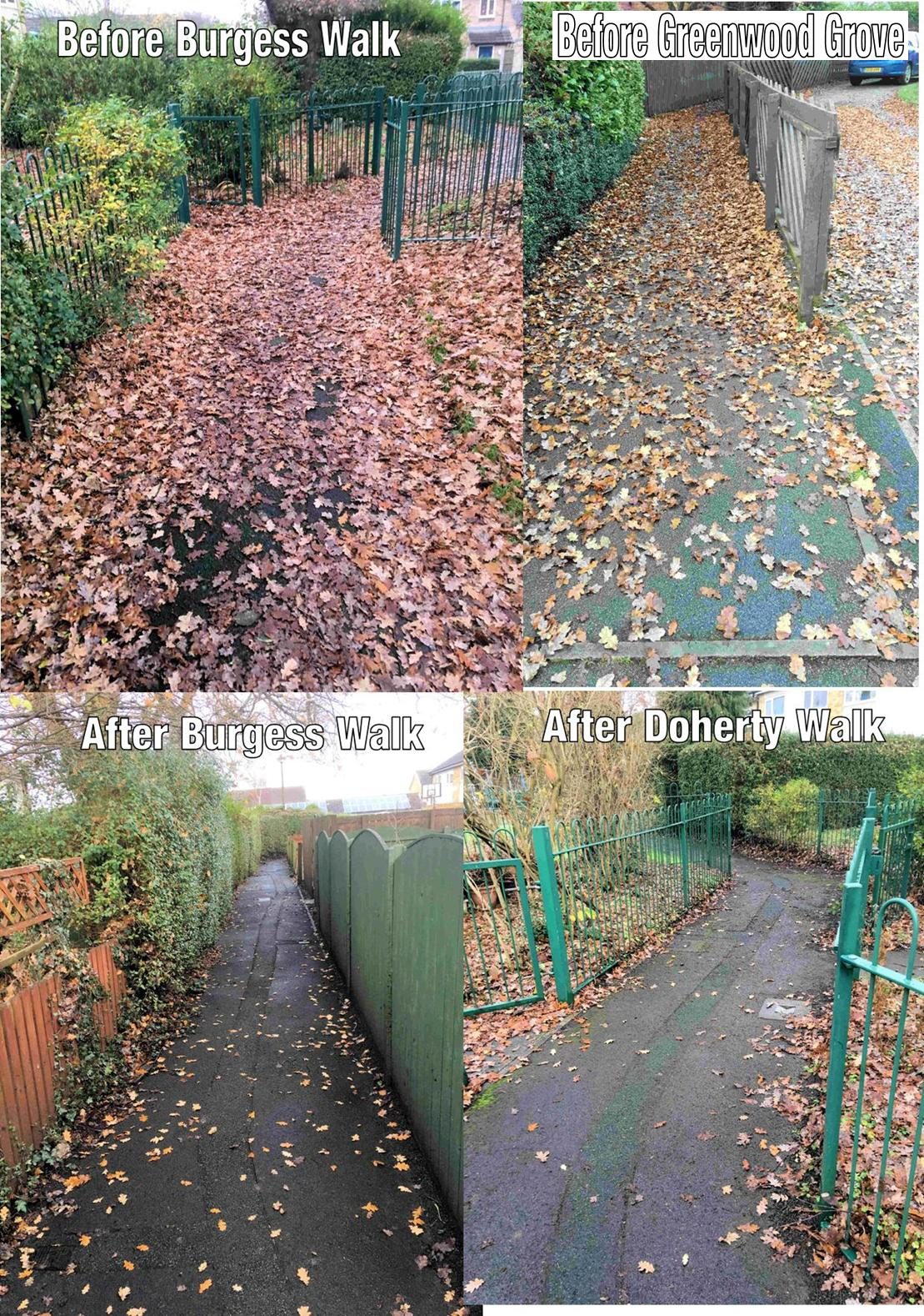 Good work by the Council in clearing leaves fin the Burgess walk and Doherty Walk areas. Still waiting for action in Greenwood Grove