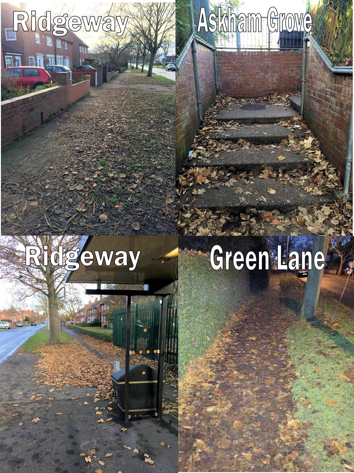 ... while Andrew also reported what we hope will be the last of the problems with leaf-fall around the area.